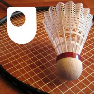 Badminton: Fitness and Training